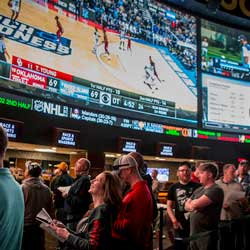 Know the Different Types of Sports Bets