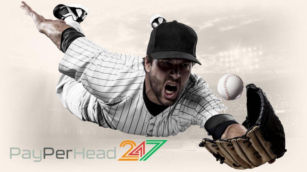 PayPerHead 247 MLB Odds